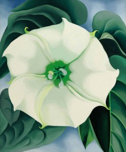 Georgia O'Keeffe's 1932 painting Jimson Weed/White Flower No. 1, which has sold for $44.4m. Photograph: AP - how little female artists are valued