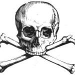 skull - The Amazing, True Story