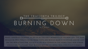 Burning Down, The Trailokya Trilogy, Book 2
