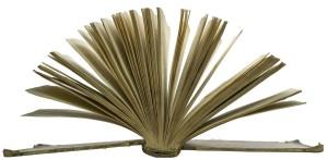 pixabay.com, book - How To Get Your Book Turned Into A Film