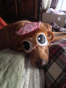 Sadie Sue Shagbottom wearing a monkey princess sleep mask - About K. Williams