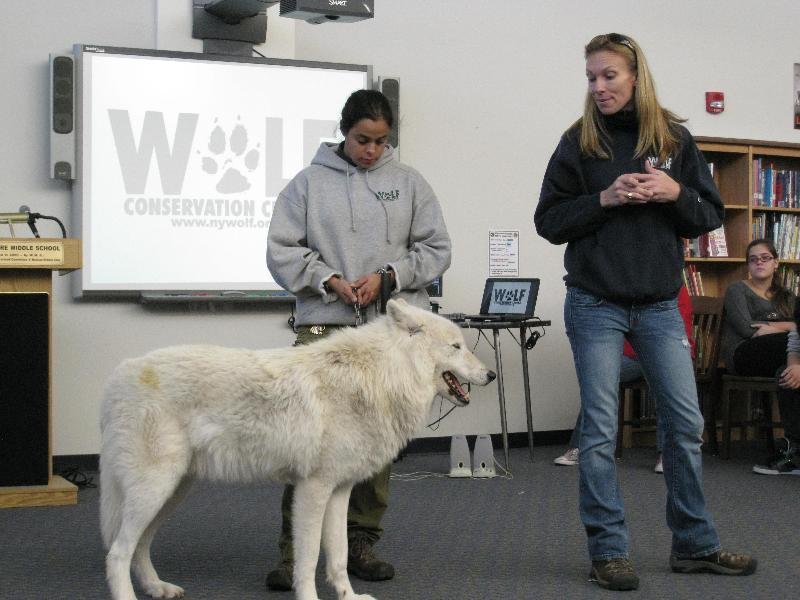 image- Atka with Maggie Howell and Rebecca Bose from the. Wolf Conservation Center at a local school. - The Trailokya Trilogy