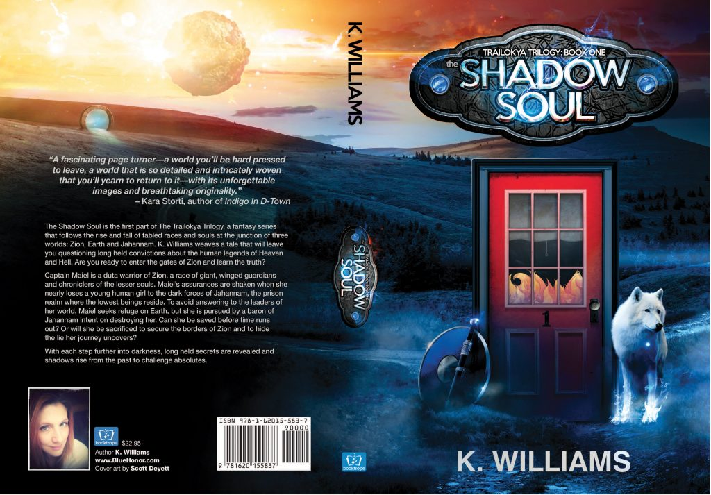 The Shadow Soul cover reveal