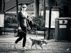 walking-the-dog-293311_1280, pixabay.com - Open Book Blog Hop