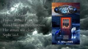 Reveiws of The Shadow Soul