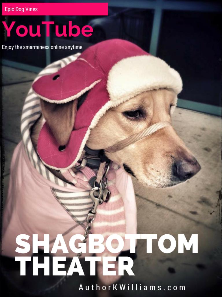 Shagbottom Theater
