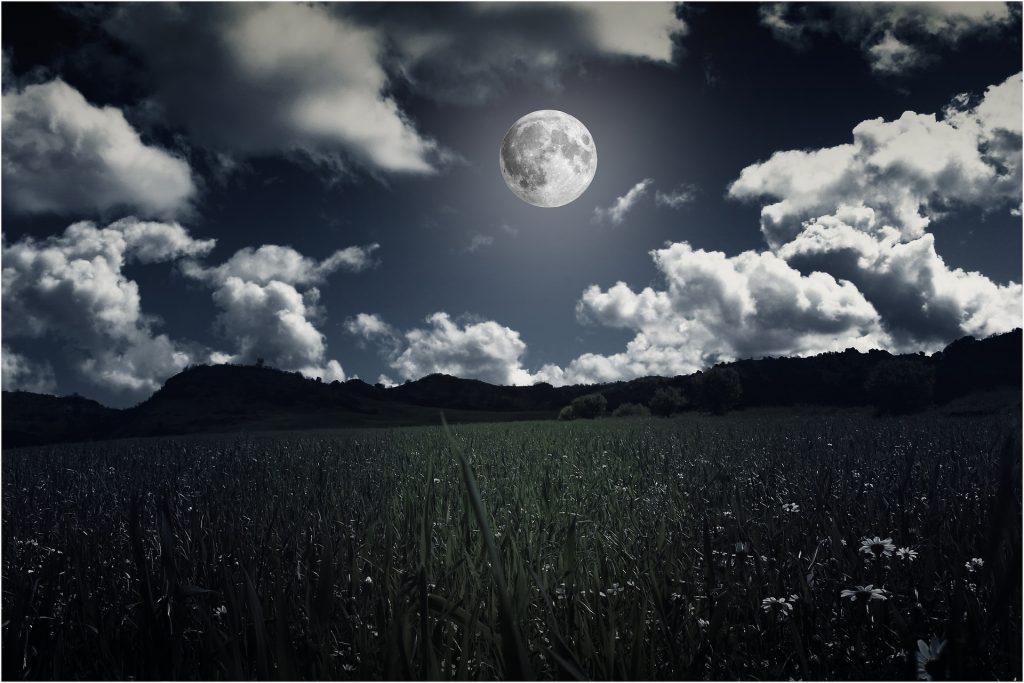 Moon Order