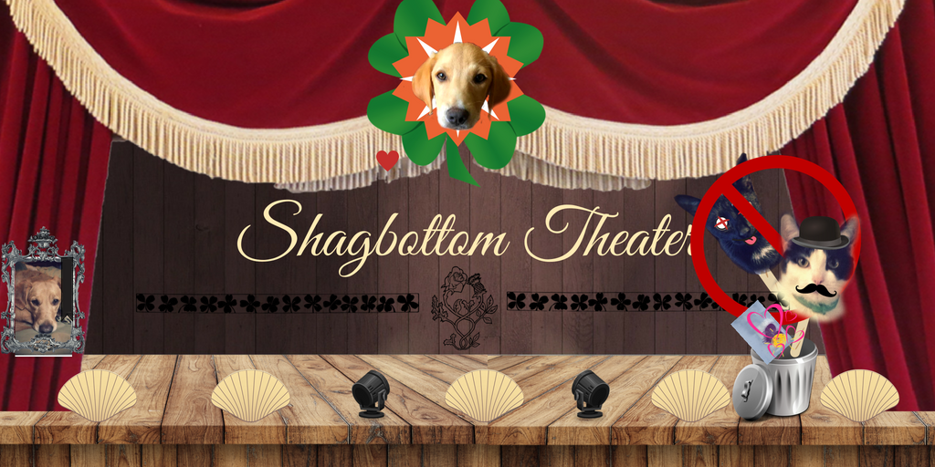Introducing Our New Cast Member, Shagbottom Theater