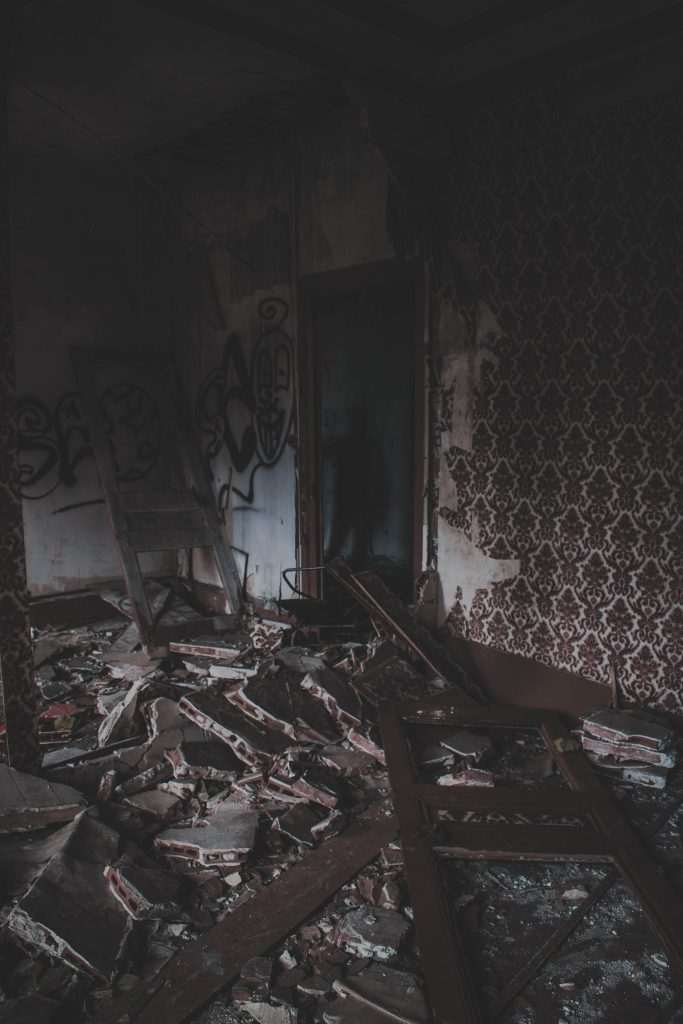 From The Trailokya Trilogy Companion, Photo by Florian Olivo on Unsplash, abandoned home with a shadow in a doorway