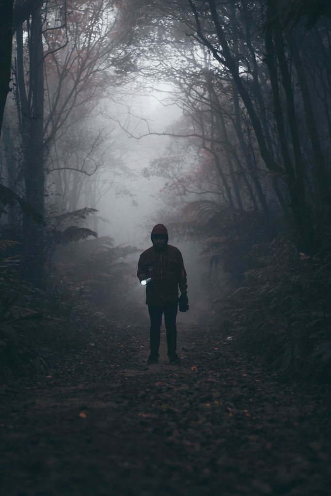 From The Trailokya Trilogy, Photo by Ramdan Authentic on Unsplash, person on a dark and foggy forest path